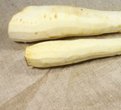 Parsnips peeled Stock Photography