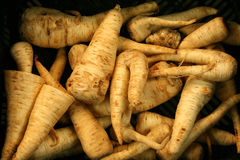 Parsnips for sale Royalty Free Stock Photography