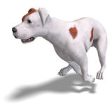 Parson Russel Terrier Dog. 3D rendering with Stock Photos