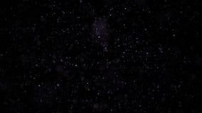 Partículas negras y oscuras Partículas orgánicas flotantes naturales en fondo relajante hermoso Partículas que brillan con almacen de metraje de vídeo