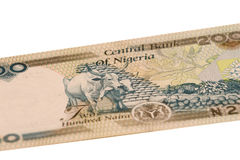 Part of 200 naura Royalty Free Stock Photo