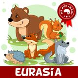 2 part. Animals of Eurasia. A set of cartoon animals living in Eurasia for children and for design. Image of a bear, a prickly hedgehog, squirrels with a nut, a Royalty Free Stock Photos