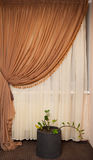 Part of beautifully draped curtain and wall with patterns Stock Photo