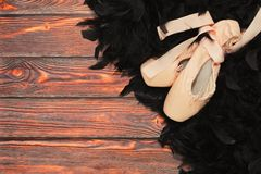 Part of black swan ballet outfit. Black swan ballerina props and accessories - traditional ballet shoes with ribbon and black feathers boa on the wooden Stock Images