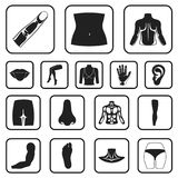 Part of the body, limb black icons in set collection for design. Human anatomy vector symbol stock web illustration. Part of the body, limb black icons in set Royalty Free Stock Photography