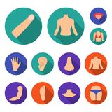Part of the body, limb flat icons in set collection for design. Human anatomy vector symbol stock web illustration. Part of the body, limb flat icons in set Stock Photo