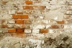 Part of the brick wall Royalty Free Stock Photo