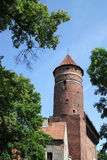 Part of the castle in Olsztyn Royalty Free Stock Photography