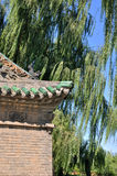 Part of Chinese temple building and willow tree Royalty Free Stock Photography