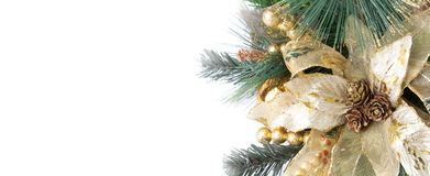 Part of Christmas decoration flower Royalty Free Stock Image