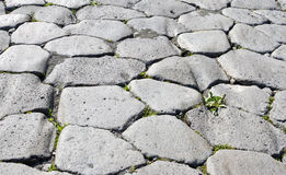 Part of cobbled road in Pompeii Royalty Free Stock Photos