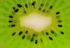 Part de kiwi Images stock