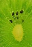 Part de kiwi photos libres de droits