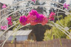 Part of an decorating arch for wedding ceremony Stock Images