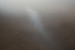 Part of the delta of river Evros with fog, Greece Stock Photography