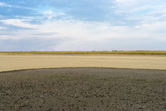 Part of the delta of river Evros, Greece Royalty Free Stock Images