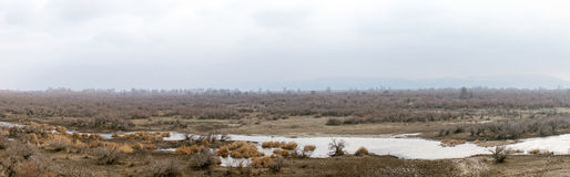 Part of the delta of river Evros, Greece, panoramic view Royalty Free Stock Image