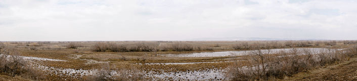 Part of the delta of river Evros, Greece, panoramic view Stock Photo