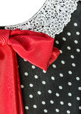 Part dress with a red bow Stock Photography