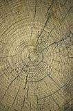 Part du bois de construction en bois Images libres de droits