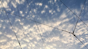 Part of Electric Wire. The Electric Wire cut the Sky Stock Photo