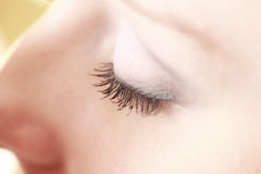 Part of face female eye makeup applying Royalty Free Stock Photos