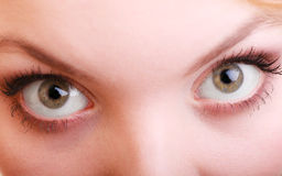 Part of face female eyes. Blonde girl wide eyed. Part of face female eyes wide open. Blonde emotional girl wide eyed Stock Images