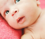 Part of face newborn cute baby.Mouth and nose.Details Royalty Free Stock Photo