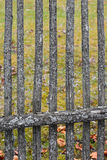 Part of the fence. Stock Image