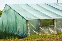 Part of film wooden greenhouse Royalty Free Stock Image