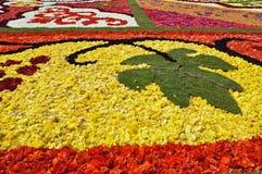 Part of a flower carpet - leaf Stock Photo