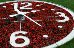 Part of Flower Clock Royalty Free Stock Images