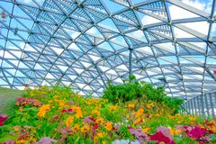 Part of glass dome in central city park. `Zaryadye` with flowers on foreground royalty free stock photography