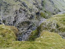 Part of grains gill, Lake District. Grains gill with little water in early summer Royalty Free Stock Photo
