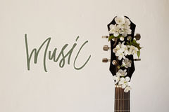Part of the guitar with blossom cherry. Part of a guitar on a white background with several cherry blossoms. Concept of music, hobby, creativity Royalty Free Stock Images
