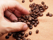 Part of hand with coffee crop beans on fabric textile Royalty Free Stock Photography
