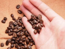 Part of hand with coffee crop beans on fabric textile Royalty Free Stock Photos