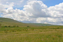 Part of the hills of the national park. Park Scherbakovsky, Volgograd region, Russia May 17, 2015. The vast hills of the park. This is only a small part of the Stock Photos