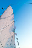 Part of hoisted mainsail of sailboat against blue sky. Part of hoisted mainsail of sailing boat with leech, rigging and reefing lines against blue sky Royalty Free Stock Images