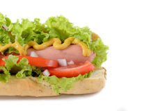 Part of hot dog Royalty Free Stock Photo