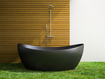 Part of interior bathroom with grass floor 3D rendering 2 Royalty Free Stock Photos