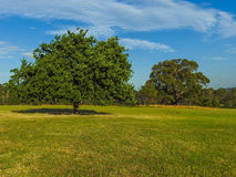 Part of the Jells park Stock Photography