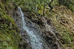 Part of the Krushuna waterfall cascade of river Proinovska near village Krushuna Royalty Free Stock Images