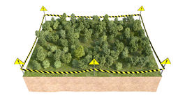 Part of land with forest 3d rendering Stock Image