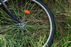 Part of a large bicycle wheel with a rim and knitting needles on the grass in the park. Part of a large bicycle wheel with rim and spokes on green grass in the stock image