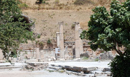 Part on the locality of Ephesus, Izmir, Turkey.  Royalty Free Stock Photography