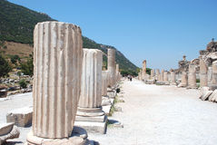 Part on the locality of Ephesus, Izmir, Turkey. Middle East Royalty Free Stock Photos