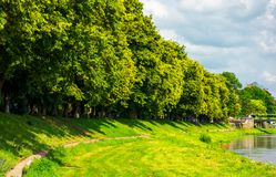 Part of a longest linden alley in Europe. Uzh river embankment of Ukrainian town Uzhgorod in summer royalty free stock photography