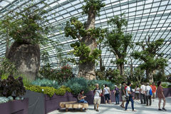 Part of the magnificent atrium display at the Gardens by the Bay in Singapore. Gardens by the Bay is a nature park spanning over 100 hectares of reclaimed land Royalty Free Stock Image