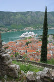 Part Of The Ancient Wall In Kotor Royalty Free Stock Image